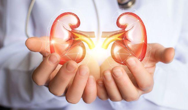 Hémodialyse en France